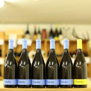 Weingut Gantenbein Pinot Noir, Chardonnay 2018 - Caduff's Wine Loft
